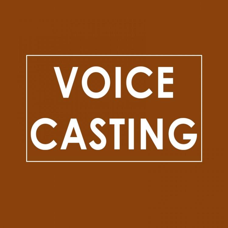 VOICECASTING2